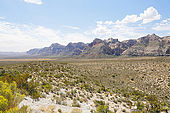 USA. Nevada. Las Vegas. Red Rock Canyon National Conservation Area. Vue depuis High Point Overlook.