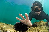 Apneiste pretending to touch a sea urchin Mediterranean Sea