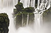 Visitors in the island of Saint-Martin by the Iguazu falls