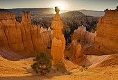 """""""Thors Hammer"""" iconic hoodoo in Bryce Canyon NP USA"""