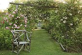 Armchair in wood-lined drive Climbing roses  ; Les Jardins de Roquelin