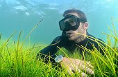 Freediver on Seagrass Syringodium Martinique