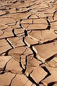 Cracked mud of the Draa Valley in Morocco