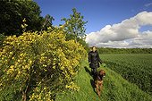Woman walking her dog in the countryside - Picardy France ; holding a small bouquet of lily of the valley