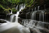 Verneau waterfall in summer - Jura Mountains France