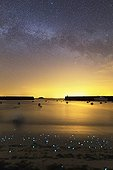 Milky Way and Phosphorescent plankton - Isle of Hœdic France ; Phosphorescent plankton light up the shore where small waves come to die. In the sky, the Milky Way at the Three Belles Summer.