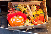 Painted pumpkin for Halloween in a wooden box