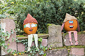 Decorated pumpkins for Halloween, Germany